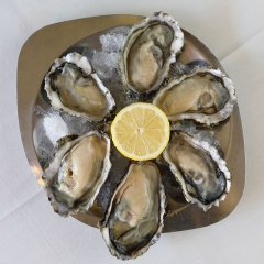 The Cow Oysters